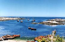 Cape West Coast Biosphere Reserve